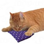 Baldrian Spielzeug für Katzen