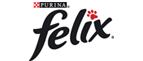 Felix Nassfutter für Katzen