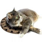 Heizkissen für Katzen
